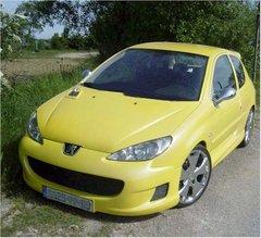 Parachoques delantero + lamina antivibracion Peugeot 206 kit Vis