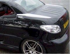 Alisamiento maletero Peugeot 206 CC kit Vision PAM tuning